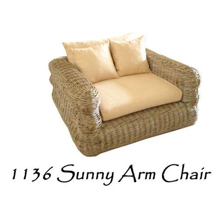 Sunny Rattan Arm Chair
