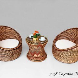 Cayratia Rattan Terrace Set